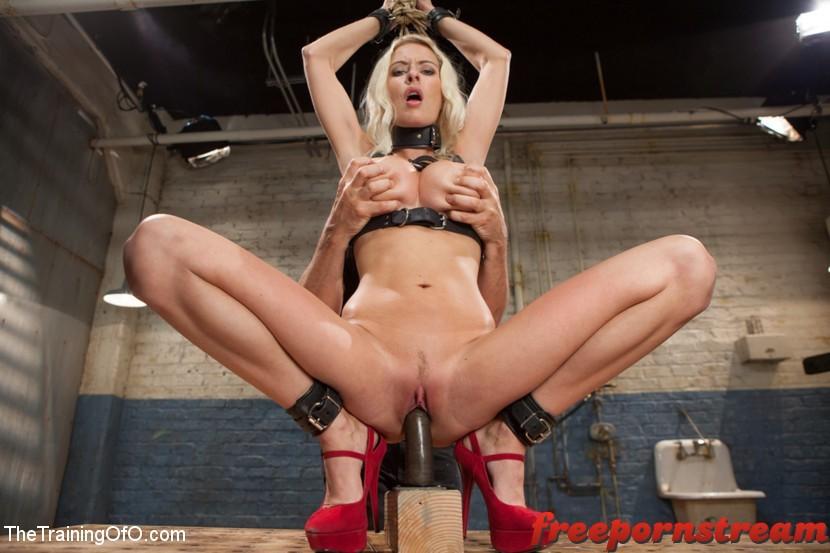 Thetrainingofo.com – The Training of a Big Tit, Bleach.. Riley Evans 2013  Anal